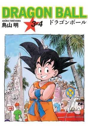 Gerekli Şeyler - Dragon Ball Cilt 3&4