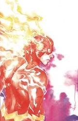 DC - Flash # 87 Variant